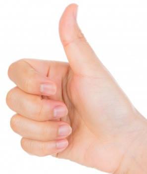 mano de la mujer como requisitos para la sección 8