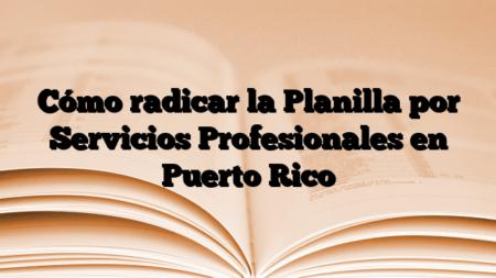 Cómo radicar la Planilla por Servicios Profesionales en Puerto Rico