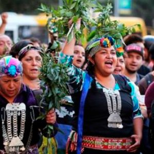 qué es la certificación indígena