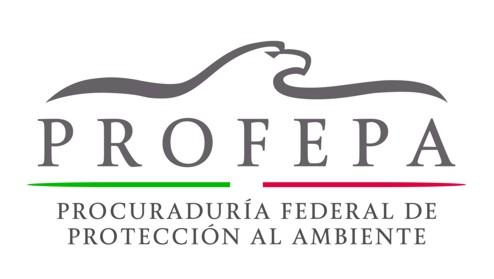 Libertad de expresión de Yucatán (LEI): el proceso de ...