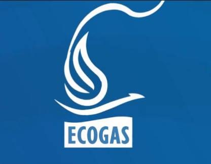 Declaración de la cuenta del logotipo de Ecogas