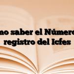 Como saber el Número de registro del Icfes