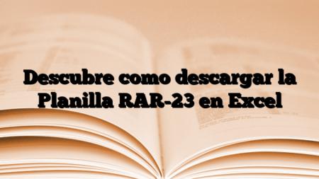 Descubre como descargar la Planilla RAR-23 en Excel