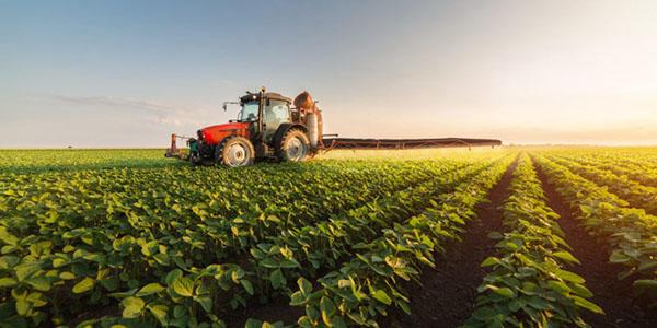 extracto bancario agrícola
