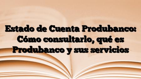 Estado de Cuenta Produbanco: Cómo consultarlo, qué es Produbanco y sus servicios
